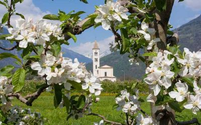 Weekend in Valtellina Primavera 2017